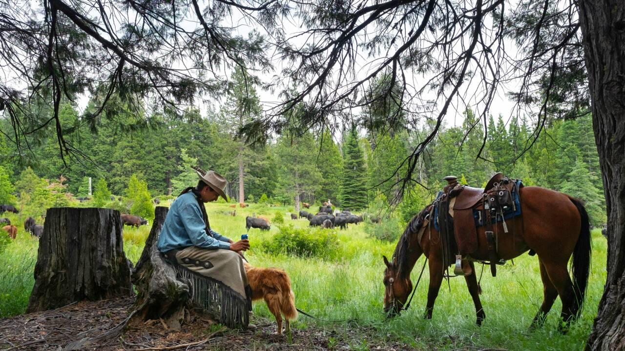 Podcast : comment nos reporters ont passé un mois à cheval avec les derniers cow-boys du Far West