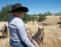 Elles ont passé un mois à cheval avec les derniers cow-boys de Californie, nos reporters témoignent