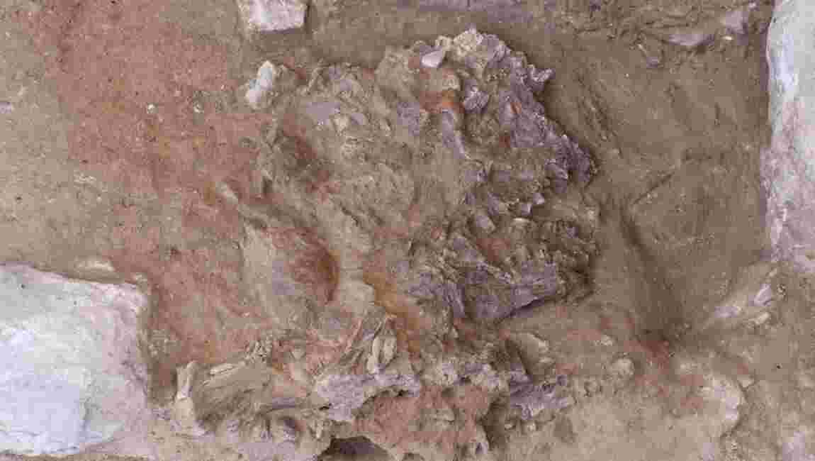 Un squelette vieux de 70000 ans relance le débat sur les pratiques funéraires de Néandertal