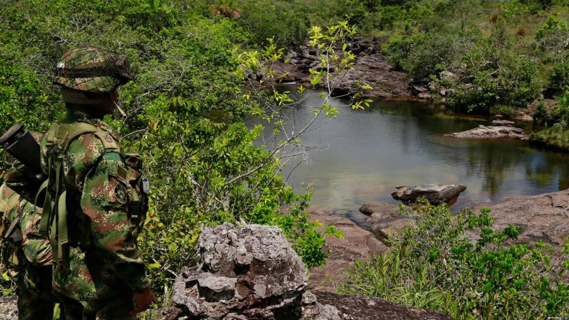 Colombie: offensive militaire contre le narco-trafic dans les parcs naturels