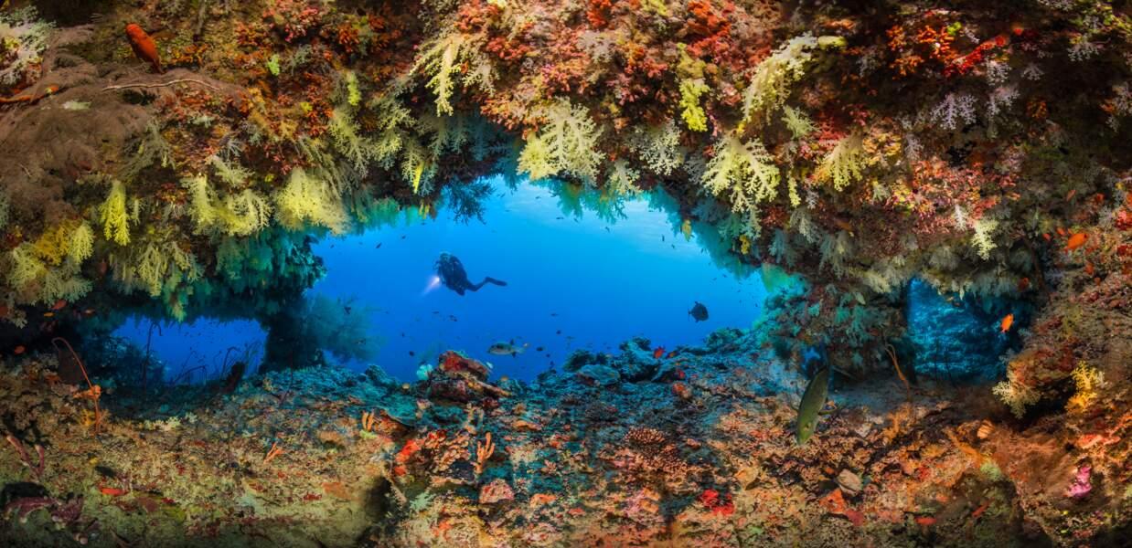 Panorama sous-marin