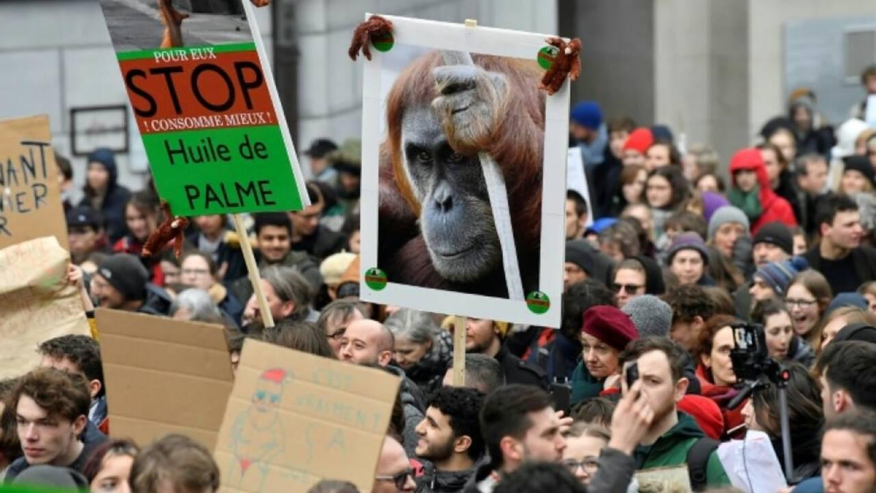 Jeunes pour le climat : 3.400 manifestants à Bruxelles avec Greta Thunberg