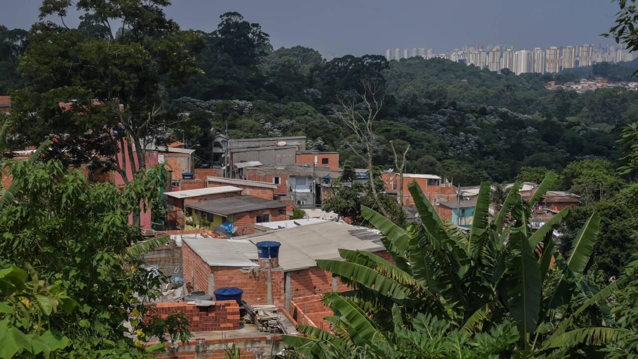 "Près de Sao Paulo, la favela verte de ""Lia l'espérance"""