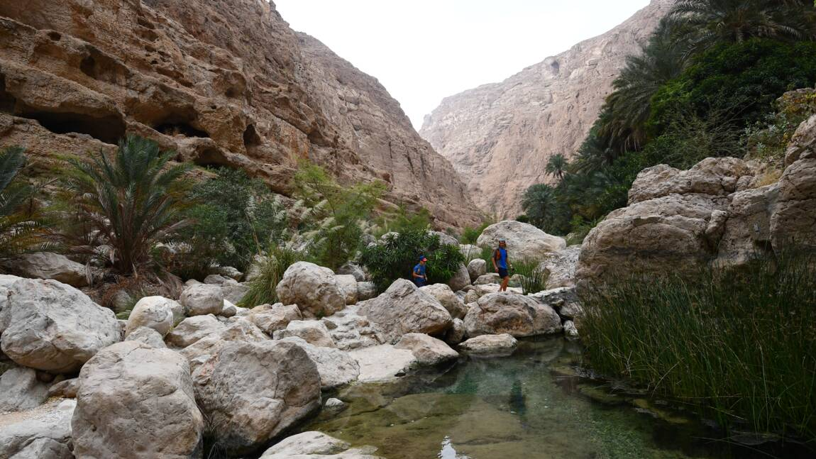 Oman va interdire les sacs plastiques à usage unique en 2021