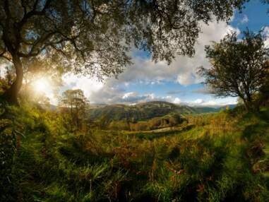 Les plus belles photos de nature capturées dans les parcs nationaux britanniques