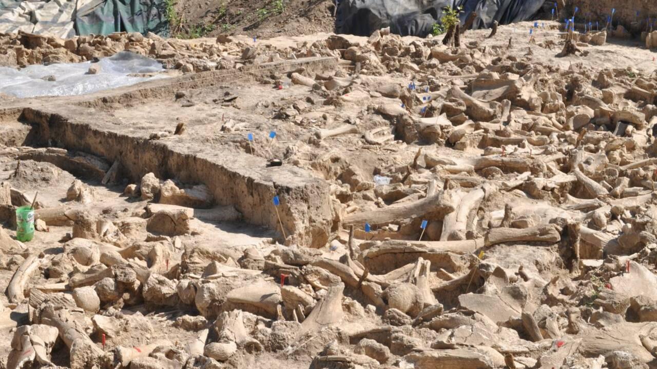 Une immense structure fabriquée à partir d'os de mammouths découverte en Russie
