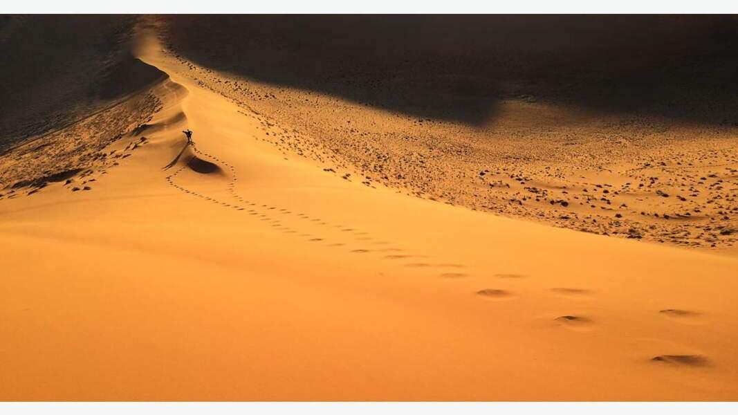 Dunes de sable rouge dans le désert du Namib