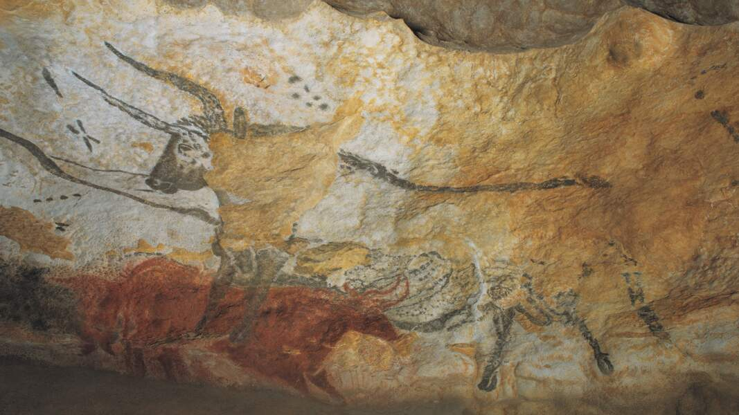 Les parois de Lascaux IV, en Dordogne