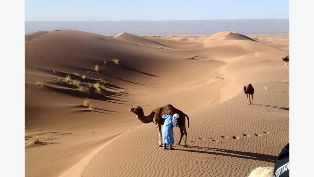 Caravane aux coeur des grandes dunes du Sahara