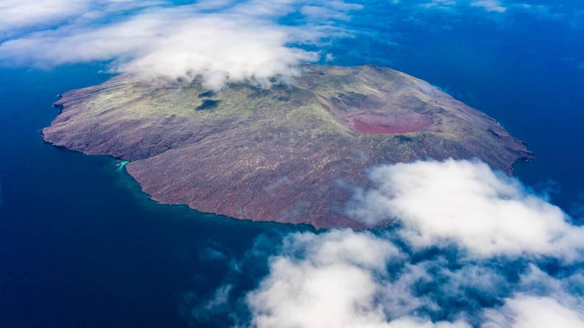 Ces îles de rêve épargnées par le coronavirus