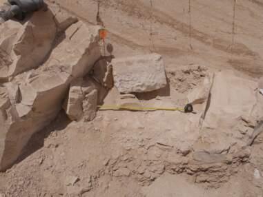 Un coffre en pierre pourrait conduire à une tombe royale inconnue en Egypte