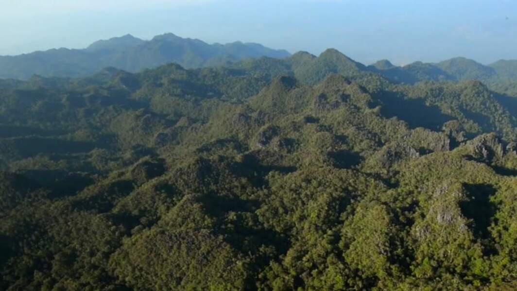 Le massif de Matarombeo en Indonésie