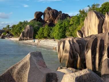 Seychelles : le sanctuaire de l'océan Indien