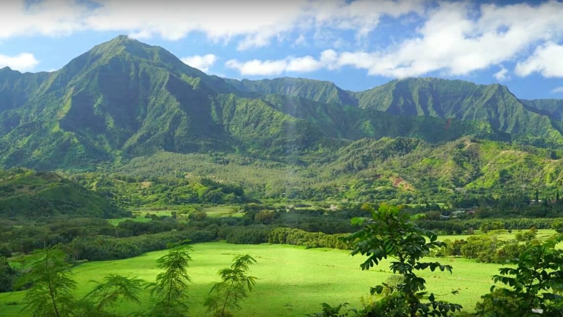 Hawaii, Islande, Costa Rica... Des films de voyage accessibles gratuitement jusqu'au 31 mars