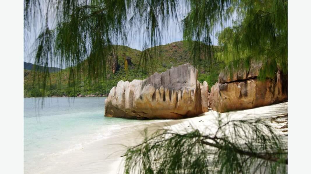 L'île Curieuse et ses tortues géantes