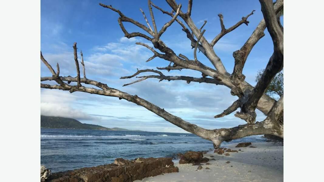 Au nord de l'île de La Digue