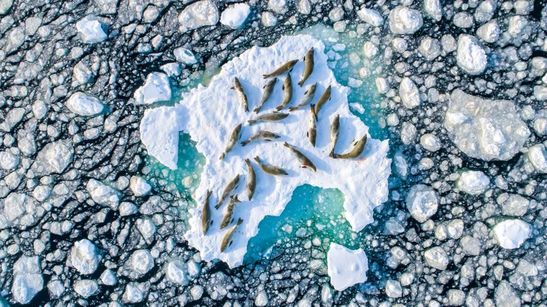 Les plus belles photos récompensées par le concours de Nature TTL