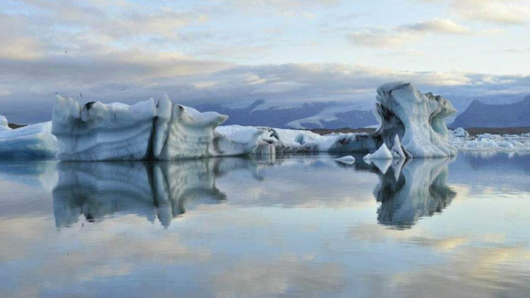 Reflets glacés