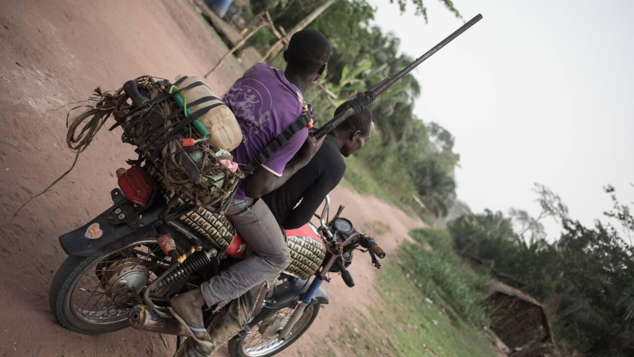 Dans un sanctuaire centrafricain, chercheurs et pygmées alliés pour sauver le pangolin