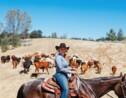Six lieux pour découvrir la Californie côté ranches