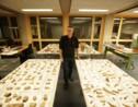 Ötzi, le mystère révélé : un documentaire à découvrir jeudi 9 avril sur France 5