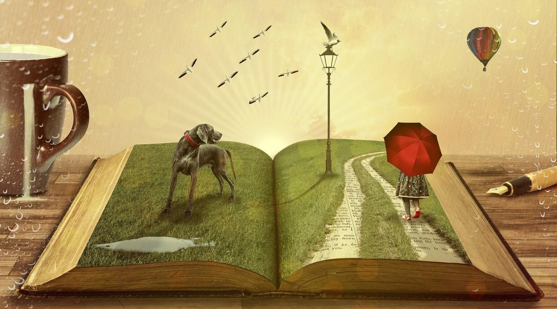 Rêver, voyager, apprendre... Comment s'occuper pendant le confinement ?