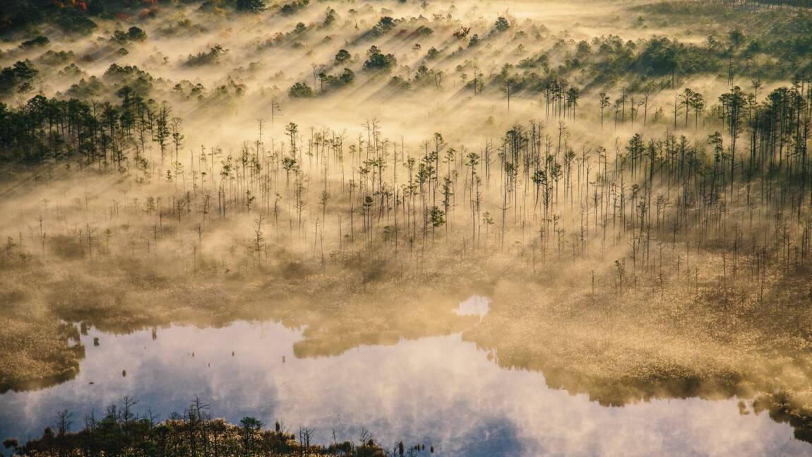 La crise climatique en images : les photos récompensées par l'agence Getty