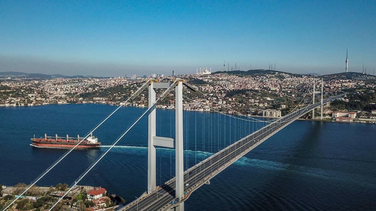 A Istanbul, les dauphins profitent du Bosphore, anormalement calme grâce au confinement