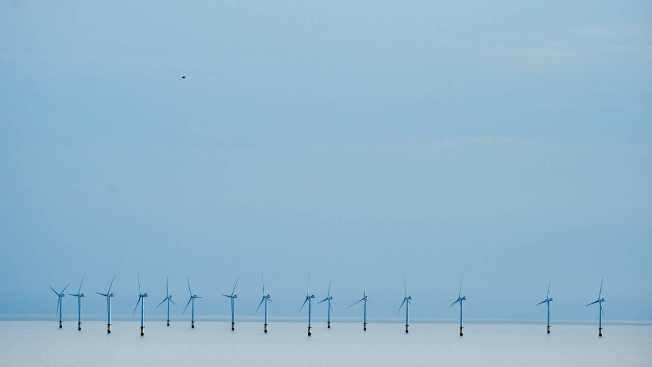 Le pétrole bon marché ne devrait pas avoir la peau des énergies renouvelables