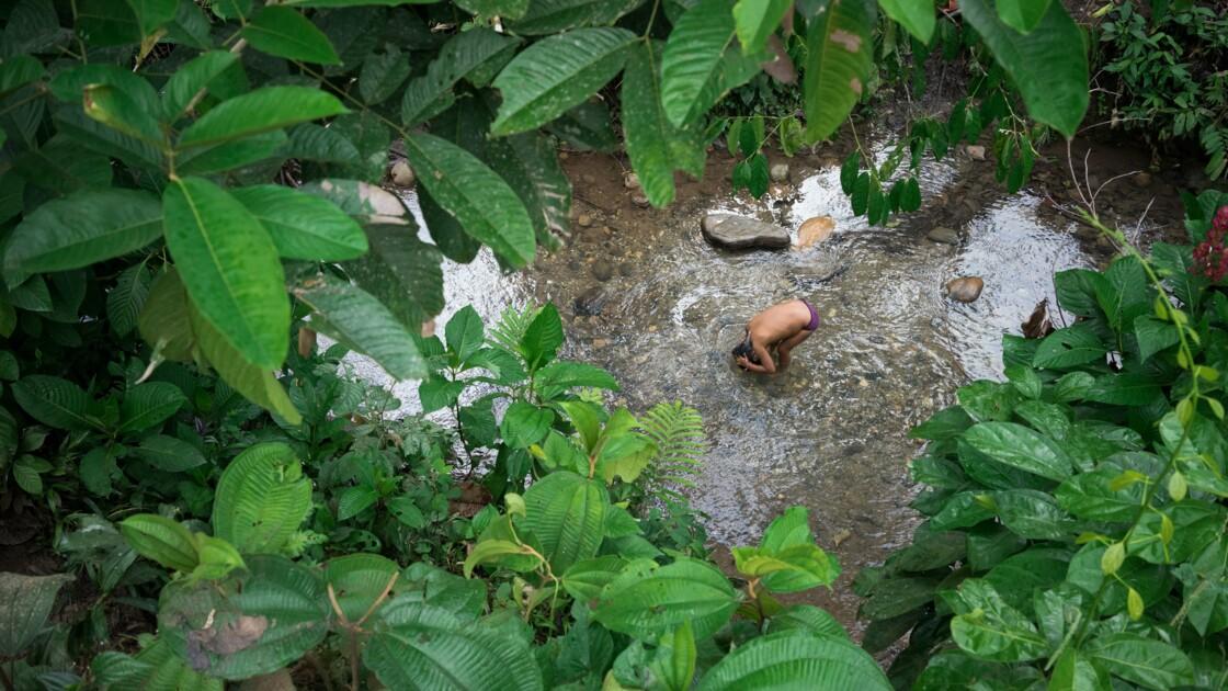 Sarayaku : los defensores de la selva