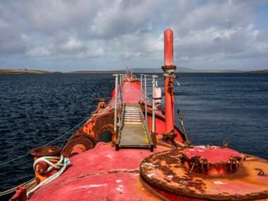 """Ecosse : comment les îles Orcades tentent de devenir """"l'Arabie saoudite des énergies marines"""""""