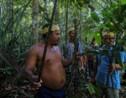 Brésil : chez des indigènes d'Amazonie, des plantes contre le coronavirus