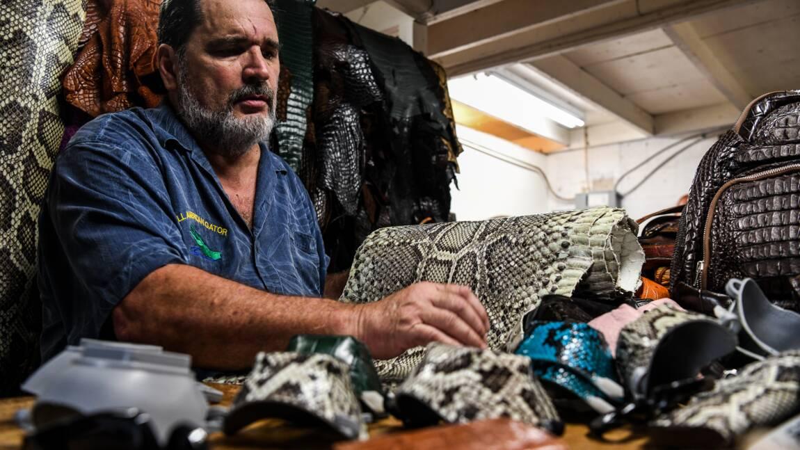 Un artisan de Floride fabrique des masques en peau de python et d'iguane