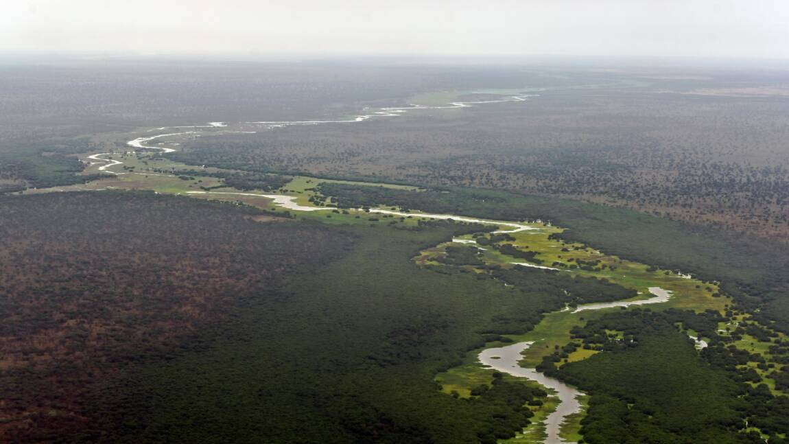 Au Soudan du Sud, la révélation d'un Eden inexploré de la biodiversité