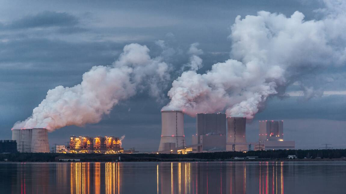 """Pourquoi limiter l'usage des combustibles fossiles serait bénéfique """"à la fois à la biodiversité, à la santé et au climat"""""""