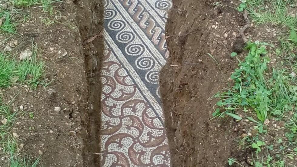Des vestiges incroyablement préservés d'une villa romaine découverts sous des vignes en Italie