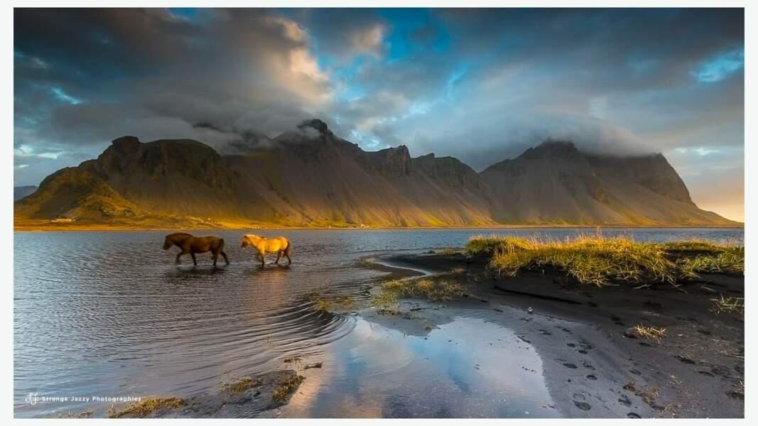 Merveilleuse terre de contrastes