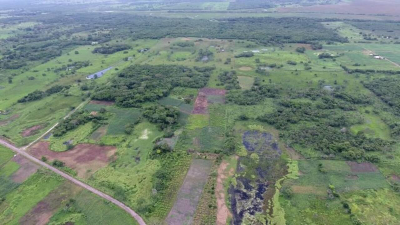 Le plus grand et le plus ancien monument maya découvert dans le sud du Mexique