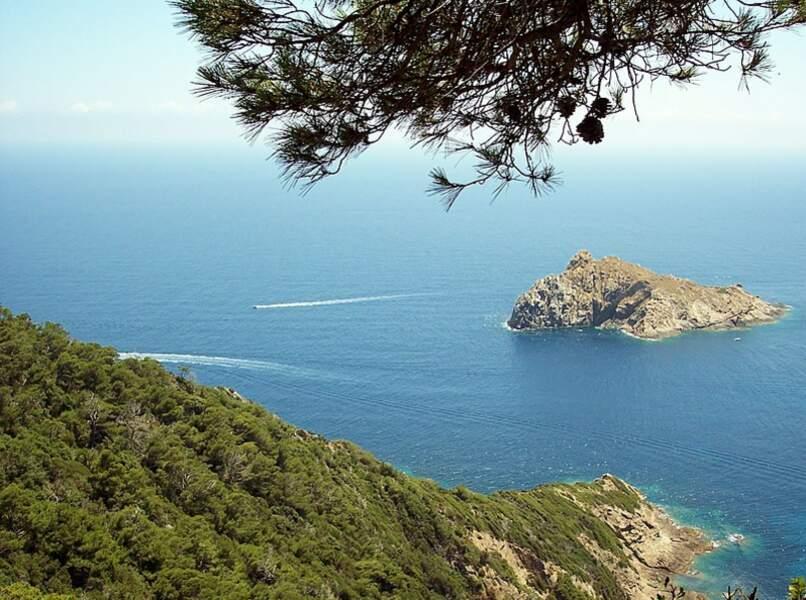 Le parc national de Port-Cros