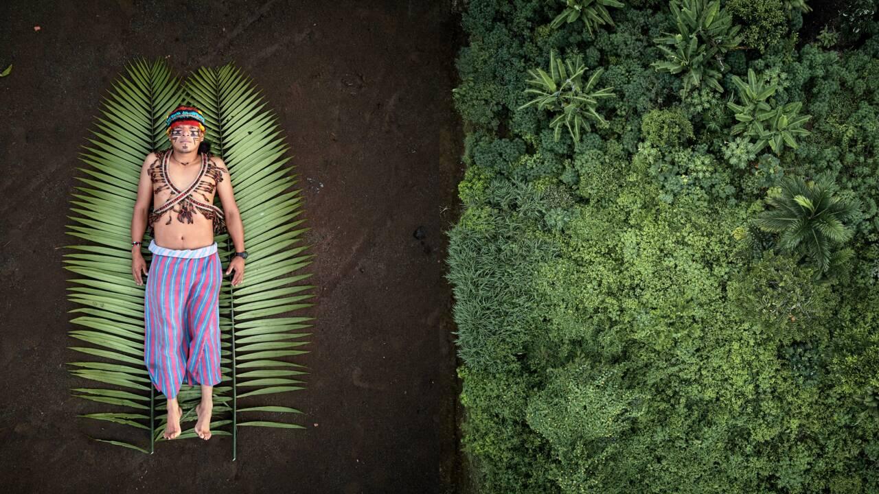Les lauréats de la compétition Sony World Photography 2020 sont…
