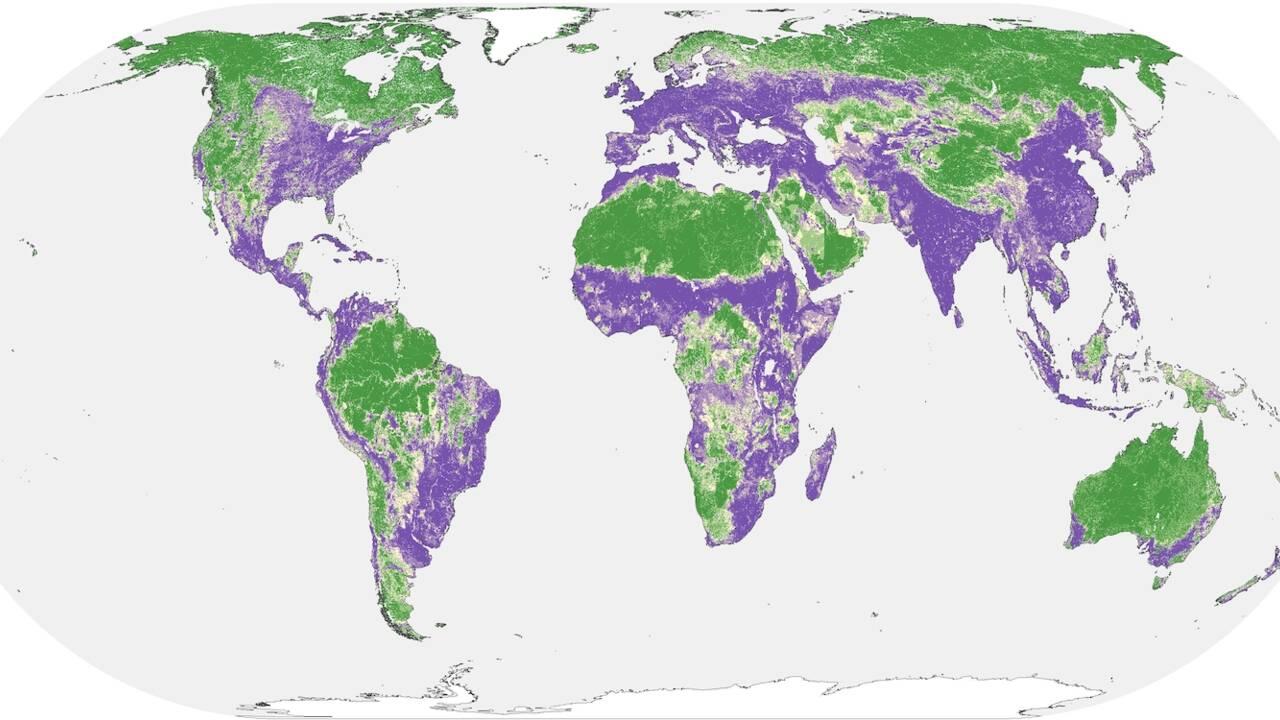 La moitié de la surface terrestre serait encore relativement épargnée par l'activité humaine