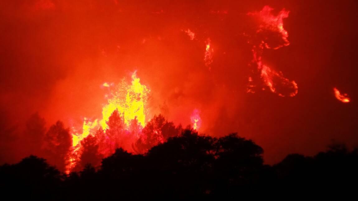 Lancement d'une campagne de prévention contre les feux de forêt