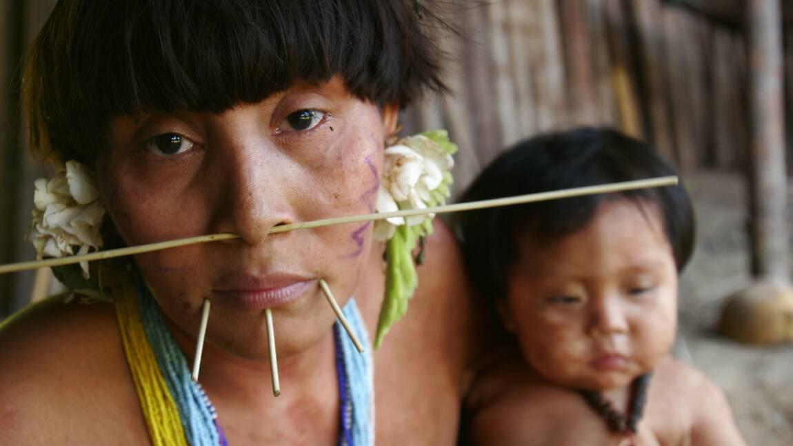 Covid-19 : l'inquiétude grandit pour les tribus amazoniennes vulnérables face au coronavirus