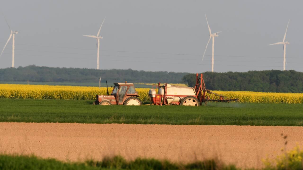 Les infrasons émis par les éoliennes ne nuisent pas à la santé, selon une étude finlandaise