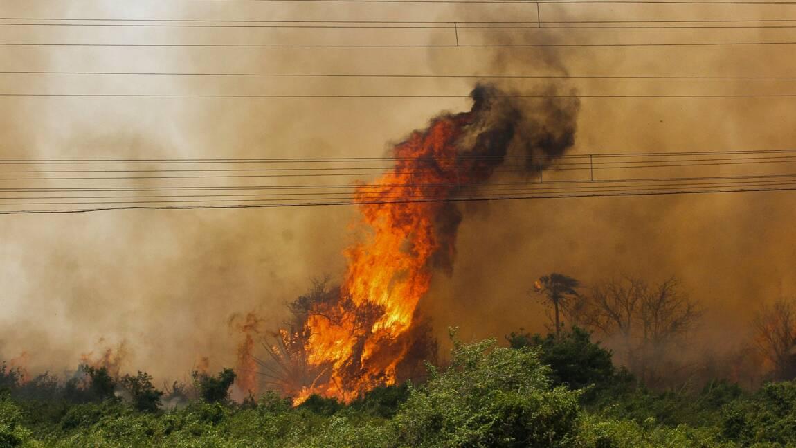 Brésil : pire mois de juin en 13 ans pour les incendies en Amazonie