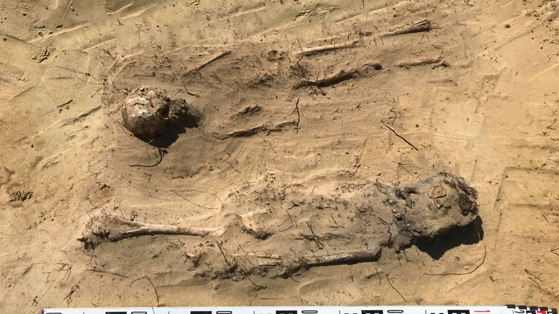 Pologne : découverte de plus de 100 ossements humains dans un cimetière d'enfants du XVIe siècle