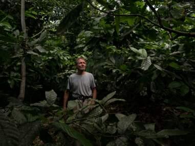 Brésil : Ernst Götsch, ce fermier suisse qui réinvente la forêt