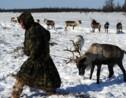 Dans l'Arctique russe, l'irréductible Nénétsie