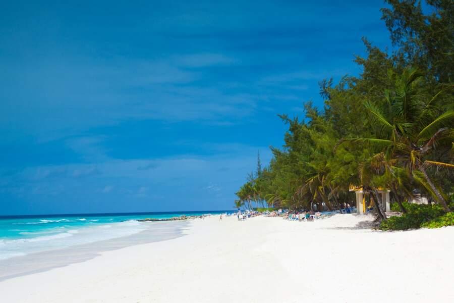 """La Barbade propose un nouveau """"visa"""" pour permettre aux étrangers de venir y télétravailler pendant un an"""