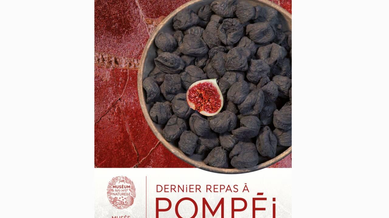 """""""Dernier repas à Pompéi"""", l'exposition qui explore les habitudes culinaires de la cité mythique"""